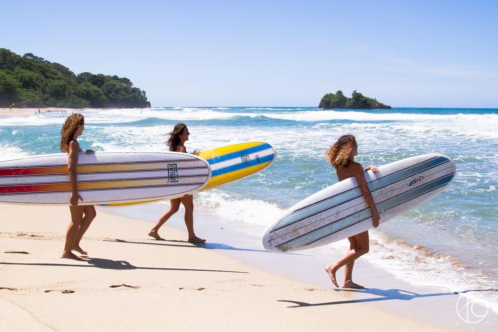 longboards.jpg