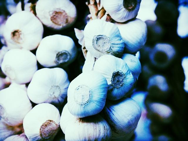 garlic-1081102_640.jpg