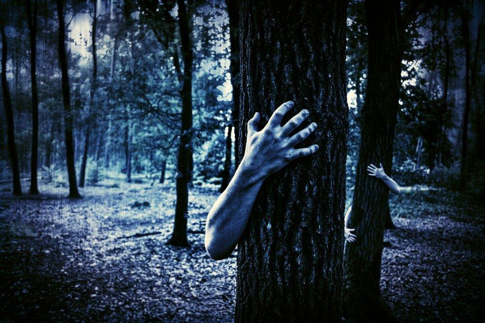 hands-984032_1280.jpg