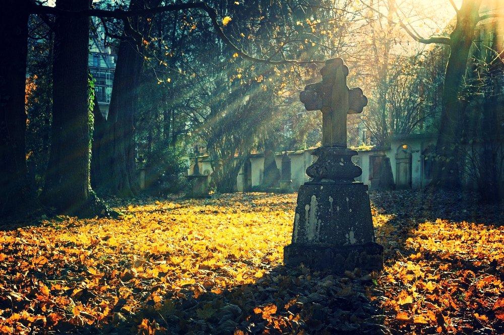 autumn-2182008_1280.jpg