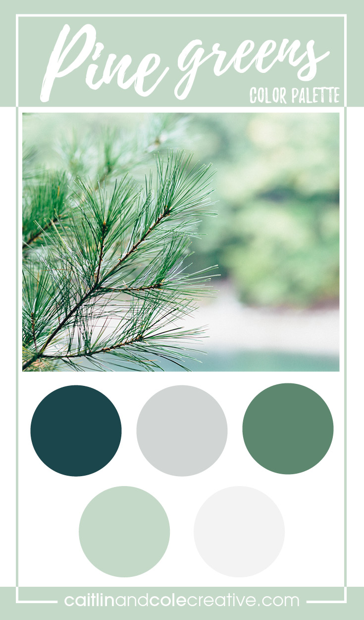 Color Palette | Pine Greens — Caitlin & Cole Creative LLC