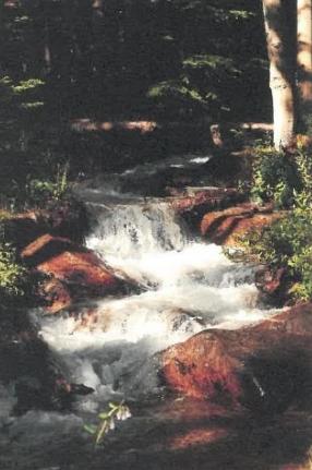 Pine Creek Trek 2017.jpg