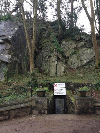 mitchelstown-caves