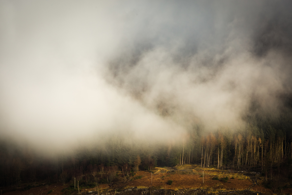 TS - Low hanging mist, Scotland.jpg