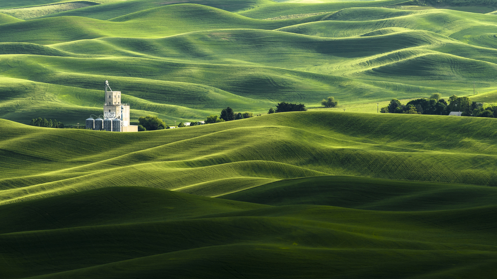 HamishMitchell_Palouse_Washington.jpg