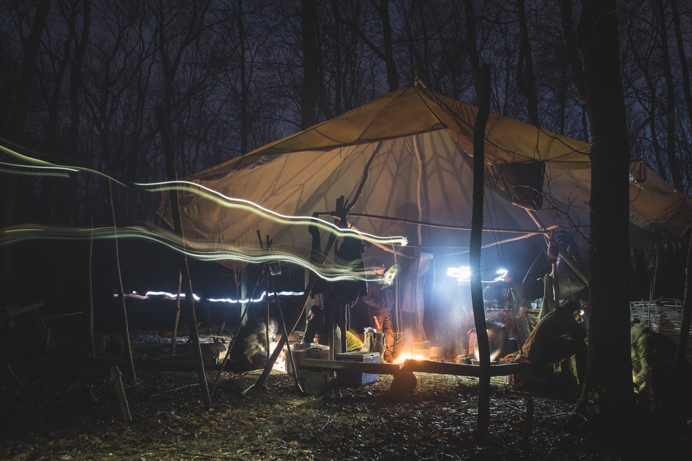 DWildey Bushcraft basecamp in UK.jpg