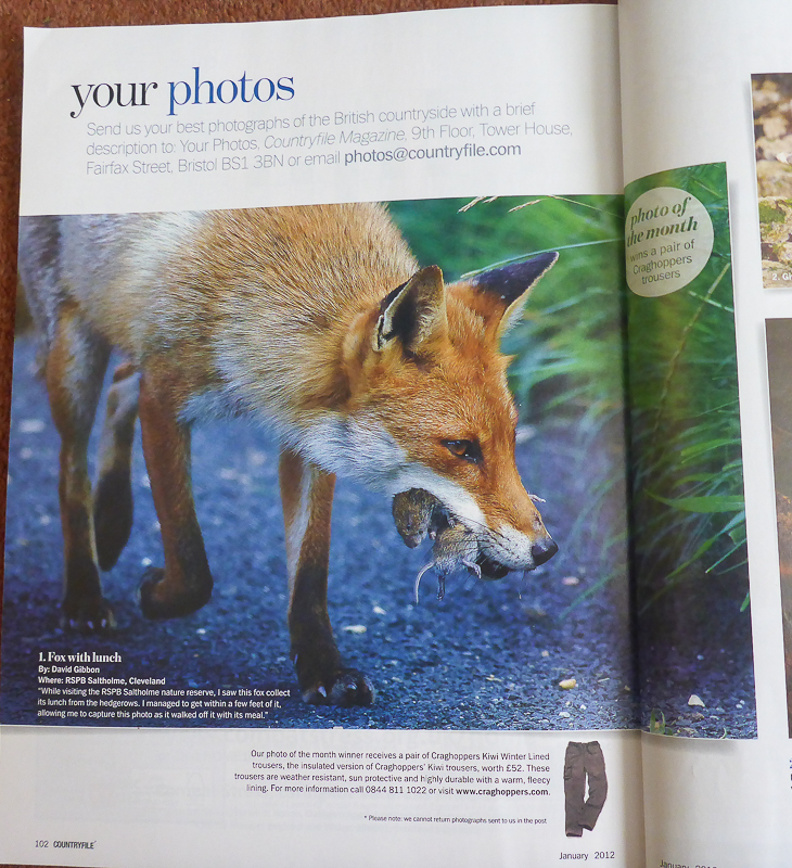 Photo of The Month - BBC Countryfile