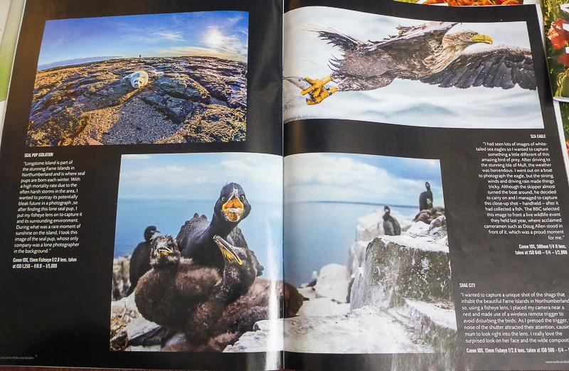 David's Portfolio - Walks & Wildlife Magazine