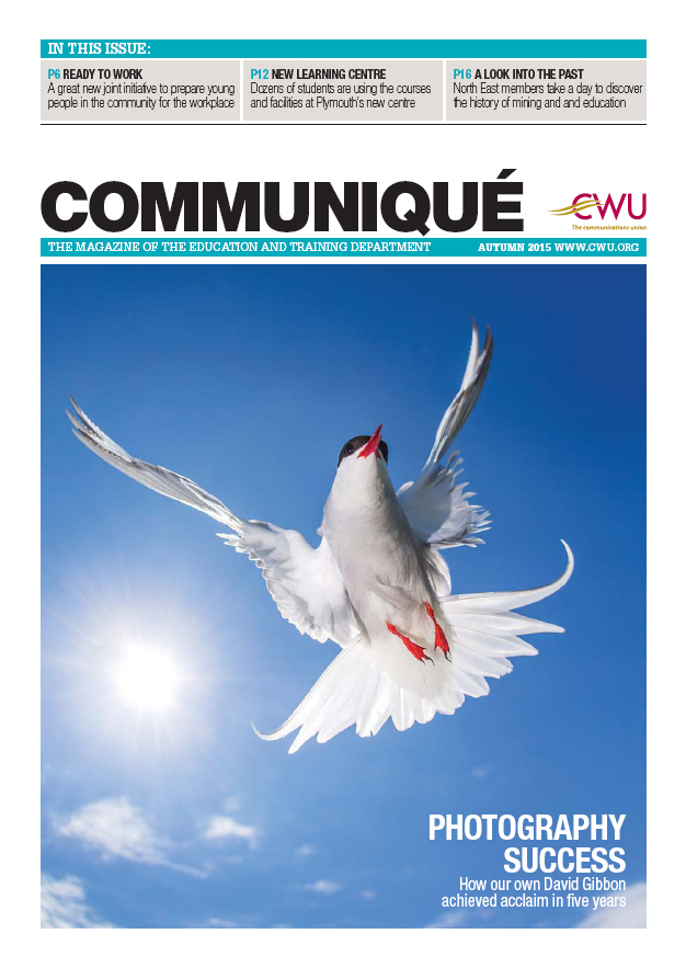 Front Cover With David's Arctic Tern