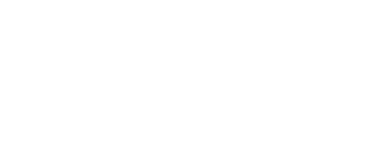 the leah still foundation