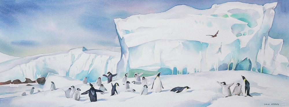Amanda Bay Penguin rookery