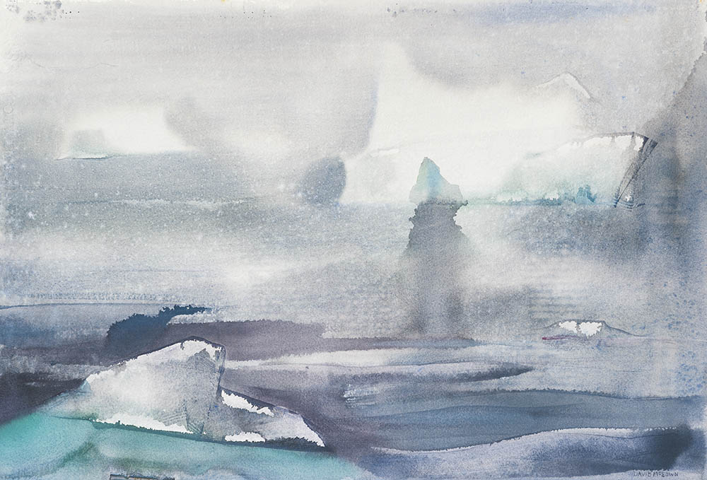 Icebergs and fog study