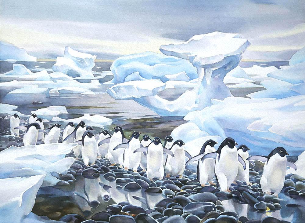 Antarctic Shoreline