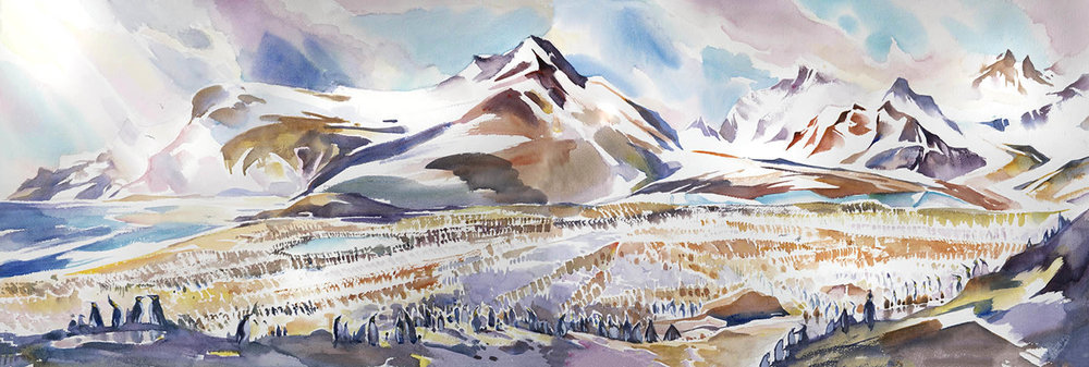 """The Colony, St Andrews Bay"" , South Georgia, (15 x 44 inches watercolour)"