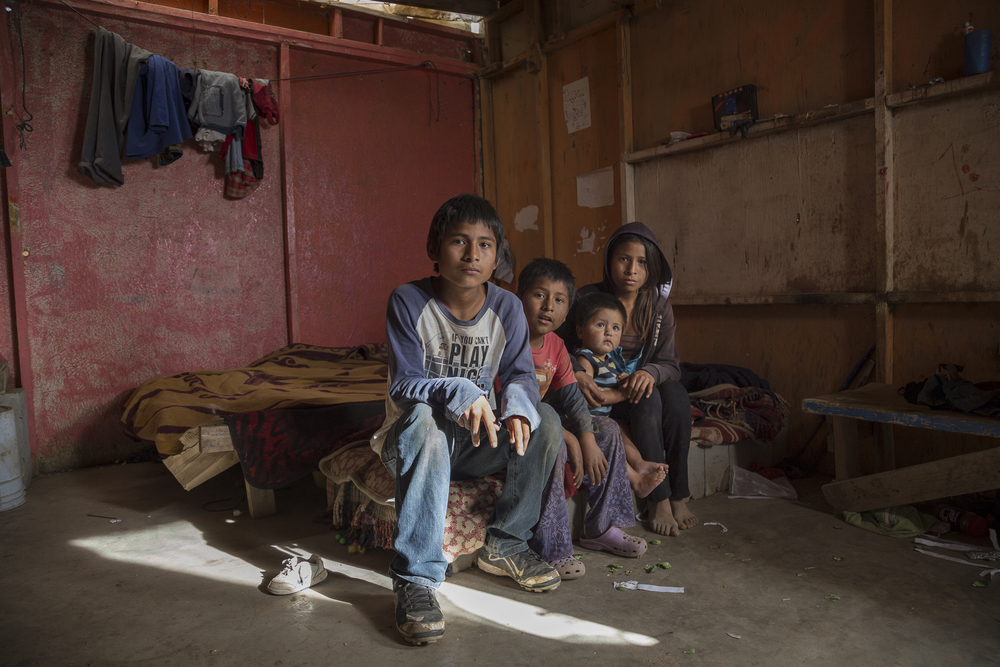 Twin siblings Marco Antonio and Mariana, 14, with their little brother Juan, 7, and nephew Juanito sit in their older brother's room that is located in the same yard right next to the room that the children share with their parents. None of the kids attend classes or are enrolled in school. The twins sometimes go work in the field. On this day all they had eaten was an egg for breakfast and were unsure if their mom would bring food for their dinner. (Griselda San Martin)