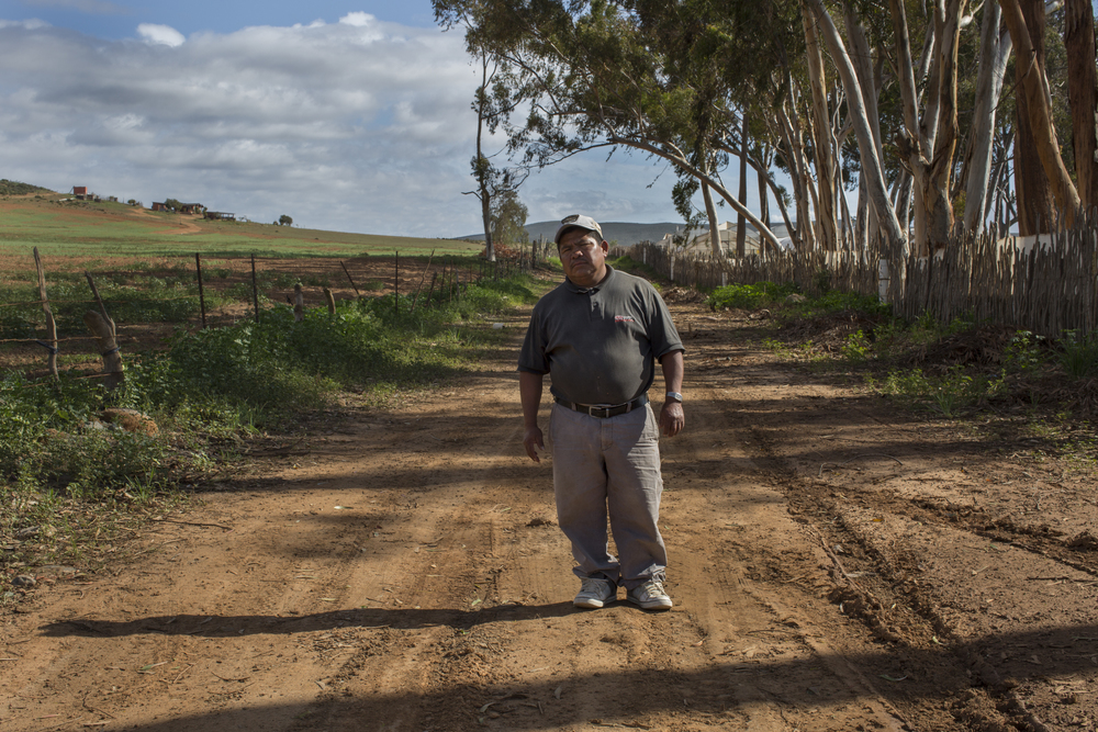 Laureano Sanchez stands outside a strawberry field in Mexico's San Quintín Valley. (Griselda San Martin)