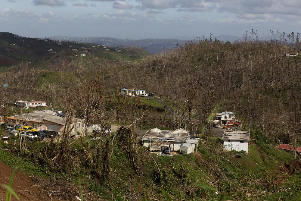 112117_Javier Puerto Rico_EC21.jpg