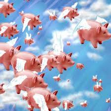 pigs flying