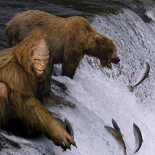 Fun fact: the word for salmon is the same in both bear and sasquatch.