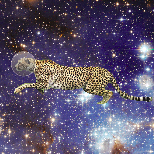 space_cheetah