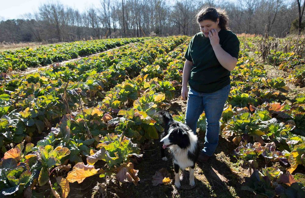 Jennifer Head and her farm dog walk through Blessed Acres Farm, Friday, Jan. 29, 2016, in Milner, Ga.  Photo:  Branden Camp
