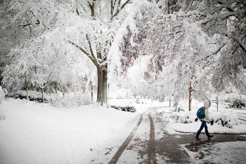 2017_Snow-109.jpg