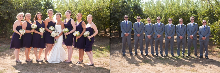 wedding party at deterings orchard in harrisburg, oregon
