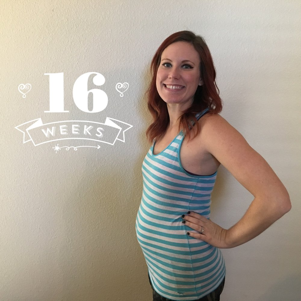 IT'S A GIRL: Second & Third Trimester — elise shea