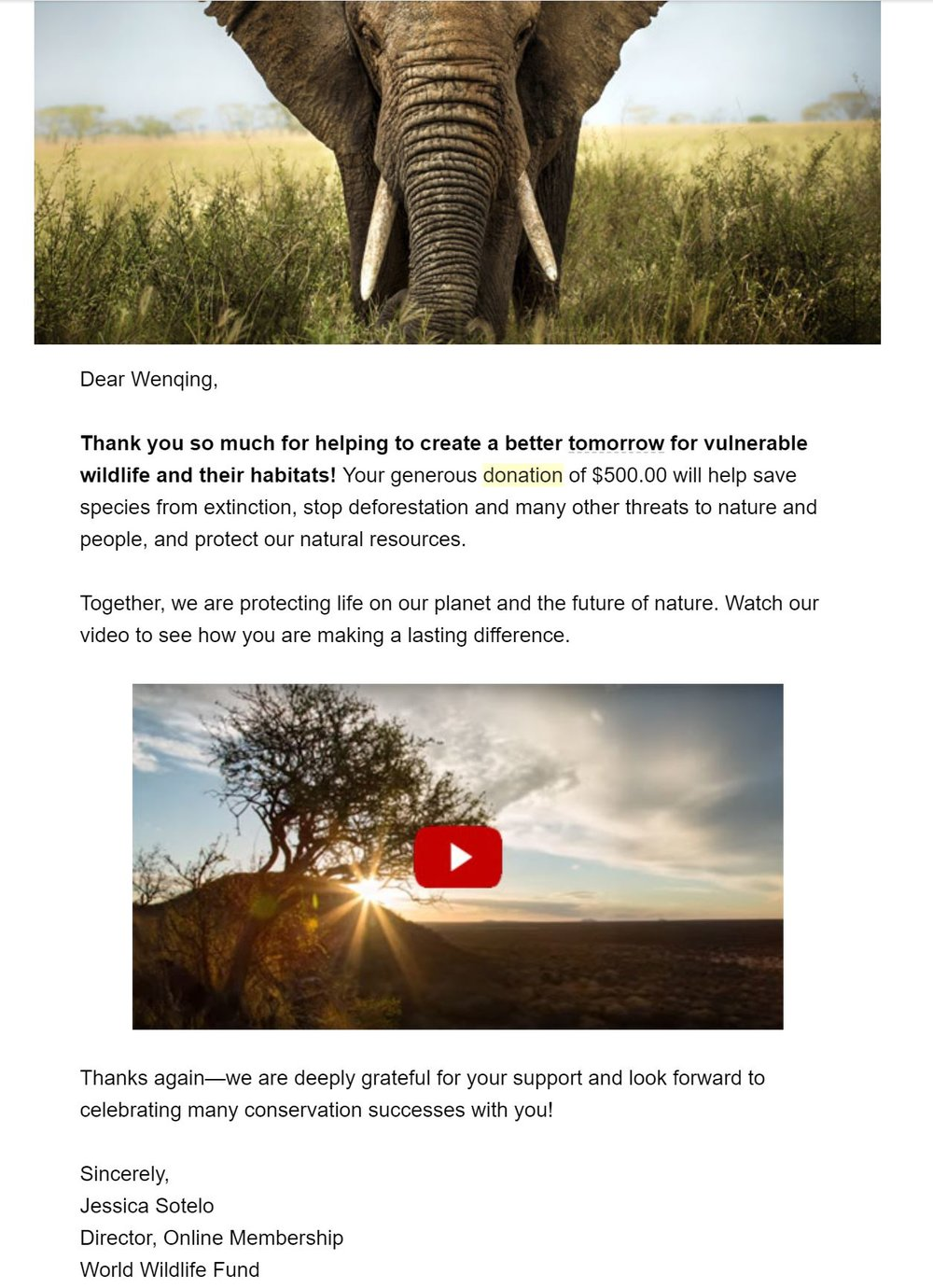 World Wildlife Fund 500 dollars.JPG