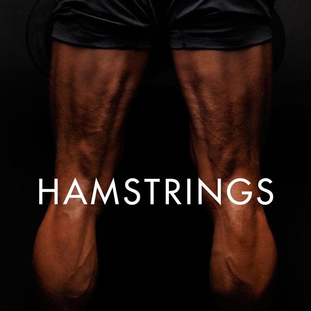 HAMS_SQ