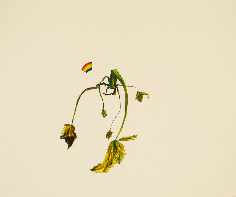 dying plant and rainbow_drawing.jpg