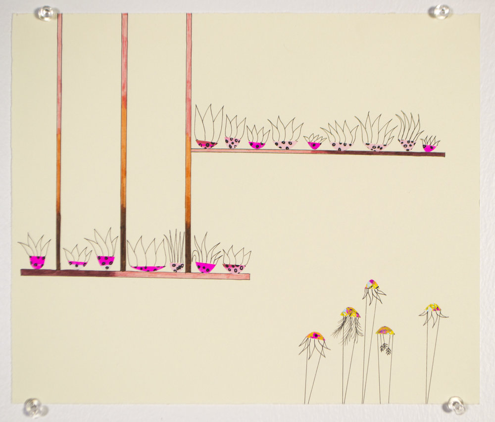 quic_pink_plants.jpg