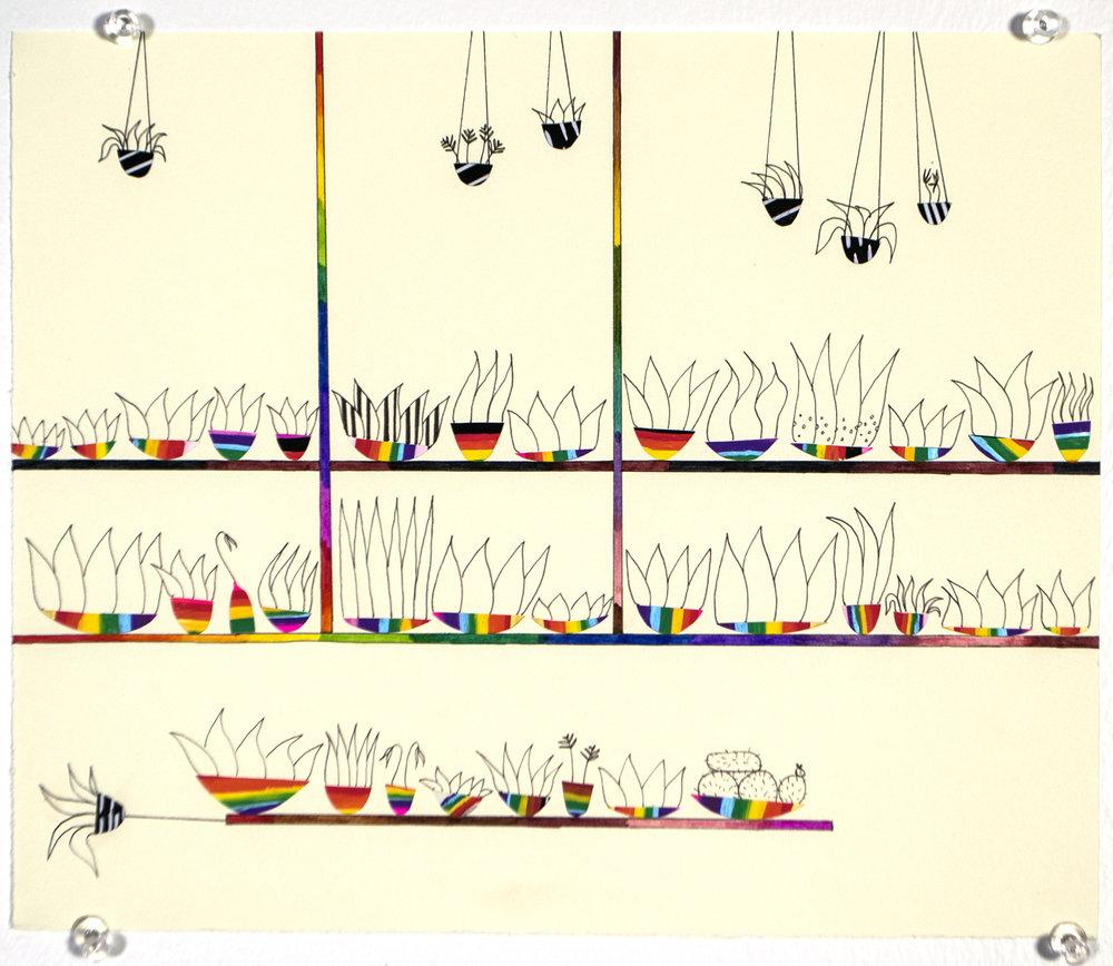 quick_rainbow_plants.jpg