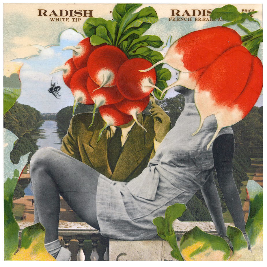 Darling, you're radishing  (2015)