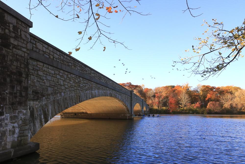 bridge_mg_2069.jpg