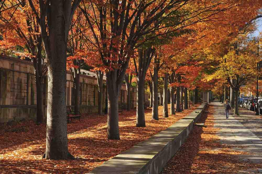 Princeton-NJ-New-Homes.jpg