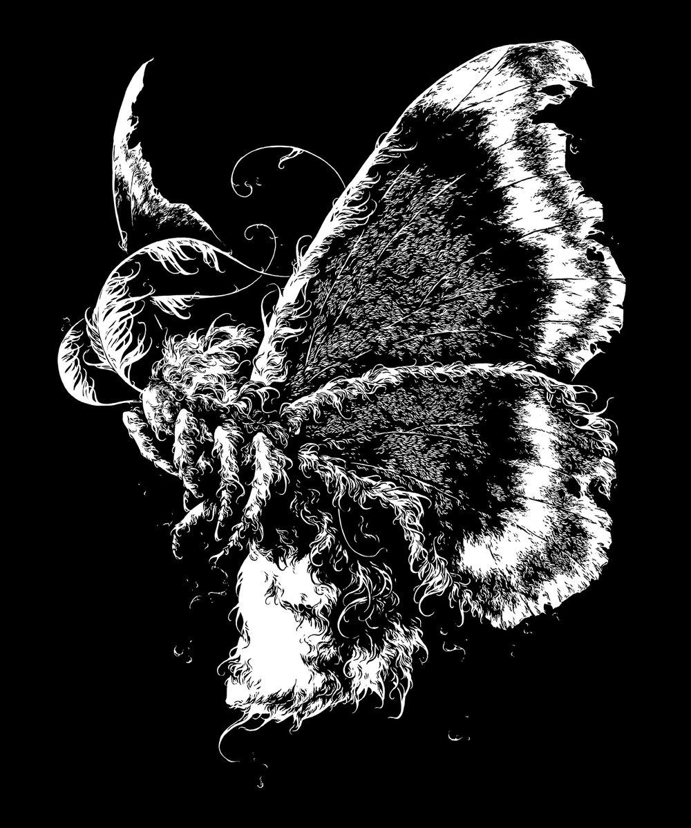 moth_1400.jpg