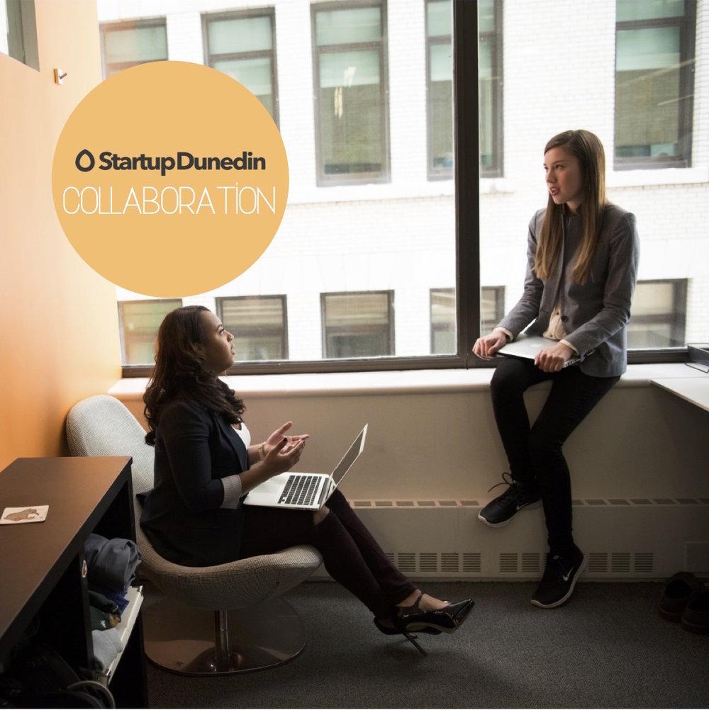 startup-dunedin-collaboration