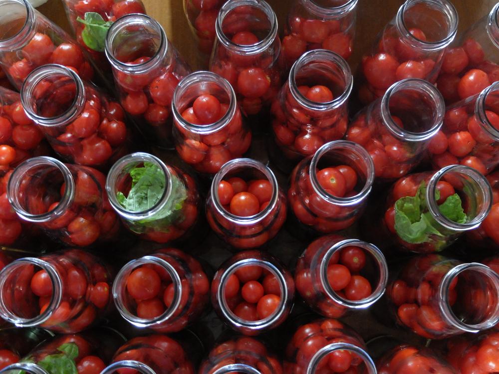 Preparing Salsa con pomodorini