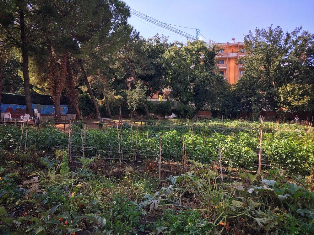 Orto di Casa Betania
