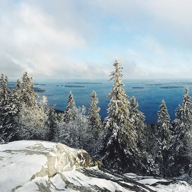 Winter is coming to Finland ❄️ 🔜🇫🇮This is from Koli last year right after the first snow landed. Panorama part 3 of 3. If you are interested in visiting Koli check my article. Link 👉🏻 Bio