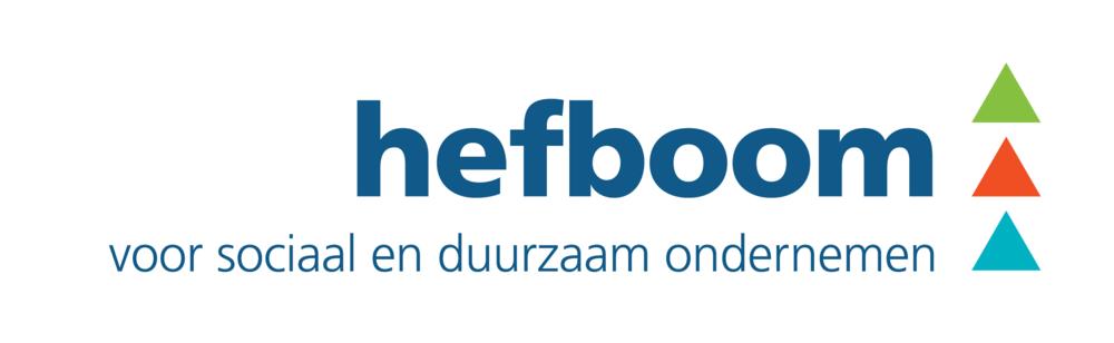 hefboom_logo_blauw-vert-white.png
