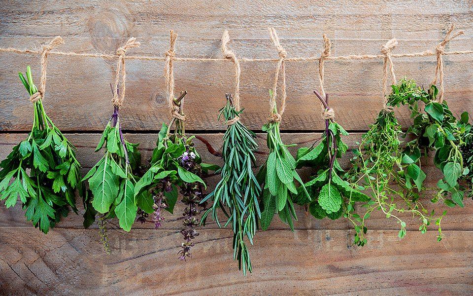 sunnere liv med urter.jpg