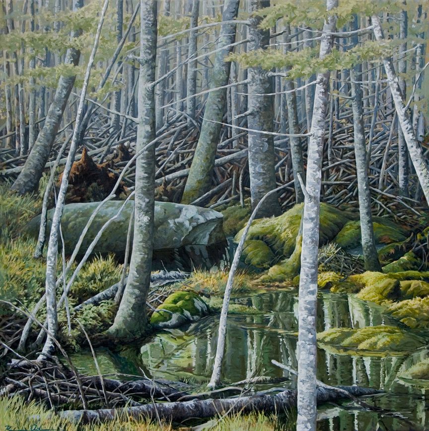Maine Rocks and Trees   48 x 48   Oil on Canvas (sold)