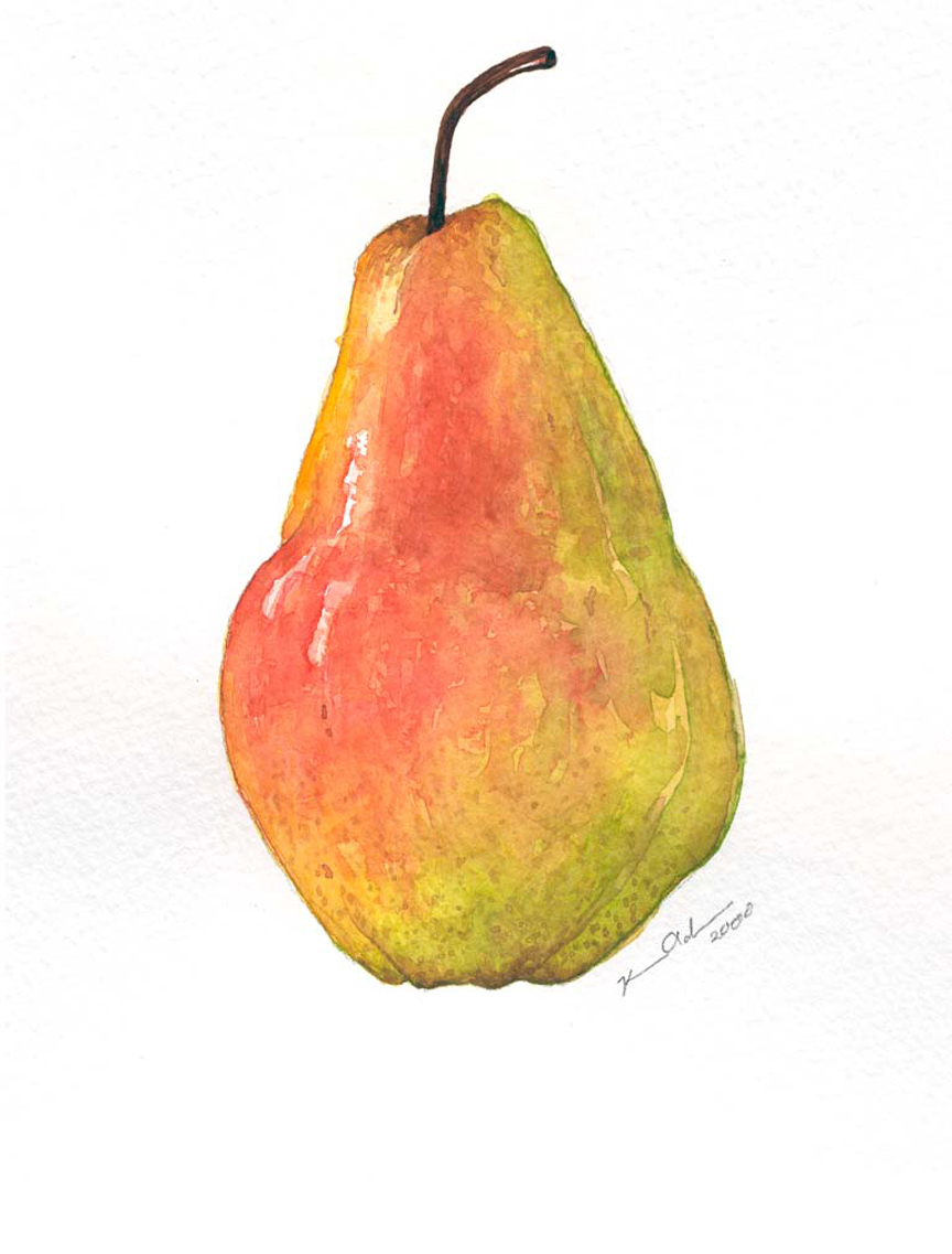 Bartlett Pear   8 x 10   Watercolor on Paper (sold)