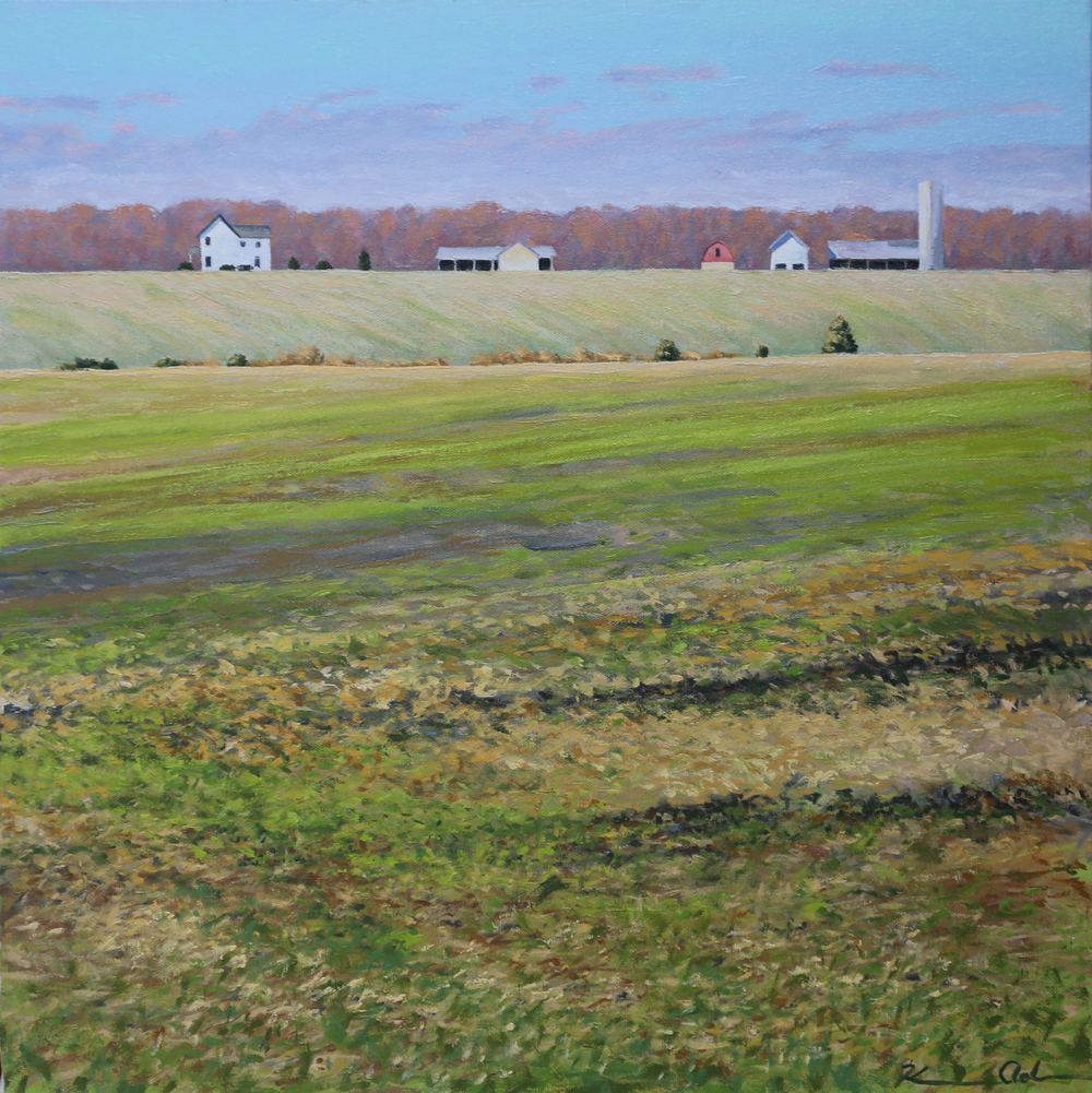 Across the Field  20 X 20   oil on canvas (SOLD)
