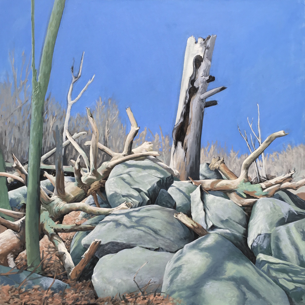 """Along the Trail: Mary's Rock"" 3' X 3' oil on canvas  SOLD"