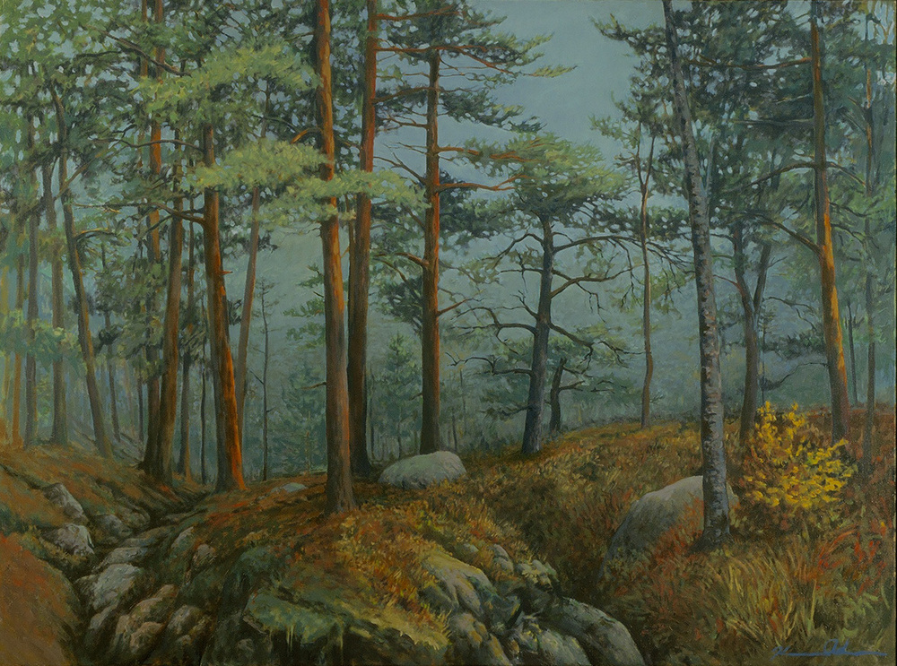 Forest Light 30 X 40 Oil on Canvas SOLD