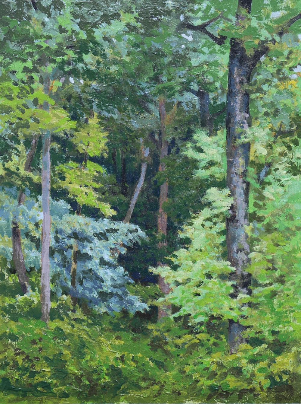Into The Woods 11 X 14