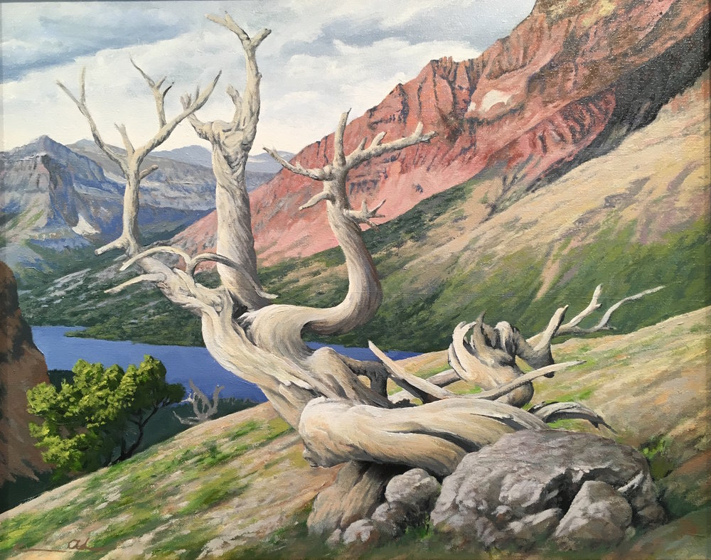 Medicine Lake: Glacier National Park 16 X 20 oil on canvas